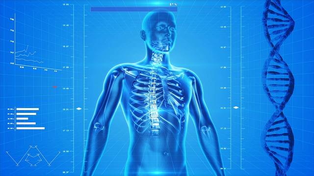 Muud anatoomia / patoloogia / kliinilised tooted