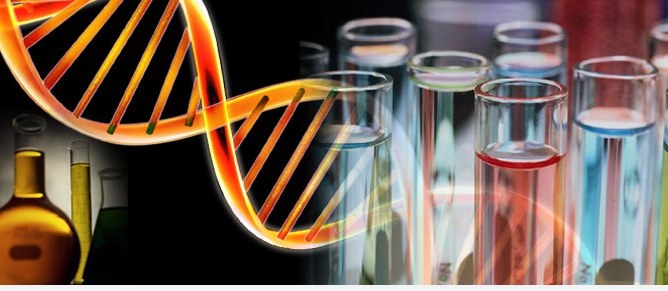 Funktsionaalne genoomika